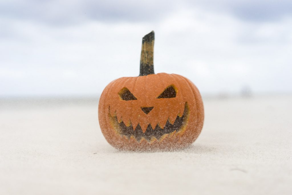 ▷ Calabazas halloween ¡Prepárate para la mejor fiesta!