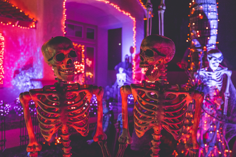 esqueletos para decorar