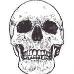 dibujo de calavera de halloween